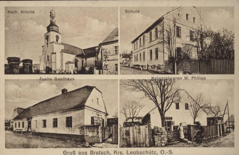 http://www.vogel-soya.de/Bratsch_2.jpg